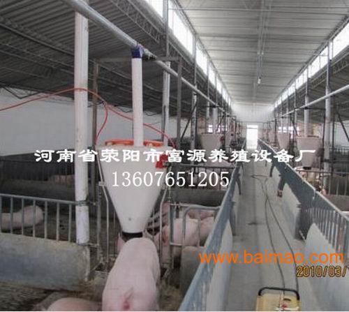 猪场育肥猪料线 料塔 运输仓 饲料加工设备图片