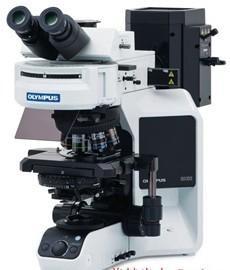 奥林巴斯显微镜优质供应商  BX53荧光显微镜