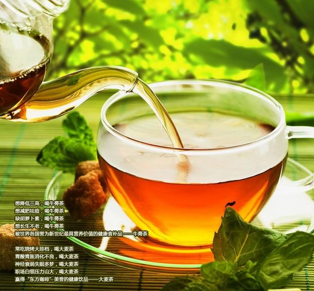 厦门牛蒡茶