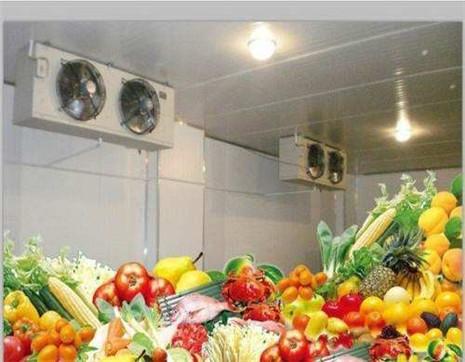 果蔬保鲜冷库