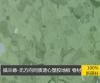 医院专用抗菌塑胶地板同质透芯 学校养?#26174;?#21150;公室专用
