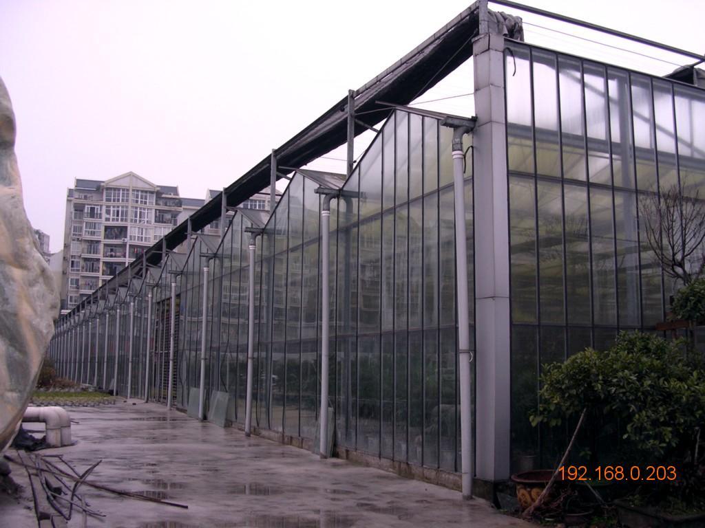 吉林阳光板大棚设计_十堰广电网