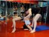 杭州羅蘭舞蹈培訓/羅蘭舞蹈培訓供/杭州羅蘭舞蹈/杭州