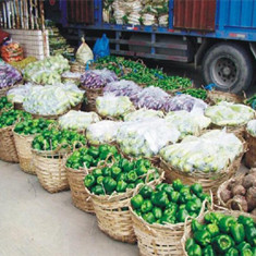 龙8国际注册送菜