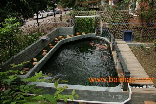 观赏鱼池设计建造 私人庭院 企事业单位观赏鱼池 工图片