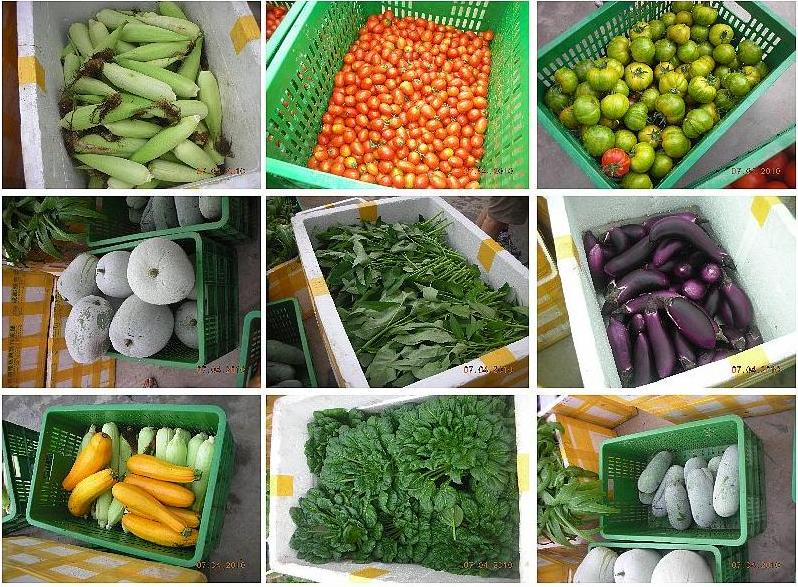 蔬菜瓜果配送服务