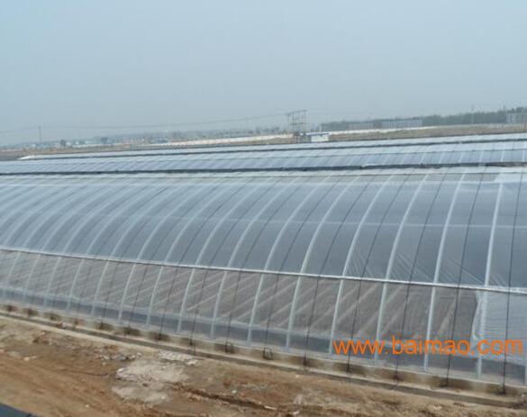 【我要上头条】中国温室大棚造价 专业建造温室大棚 青州温室大棚建造