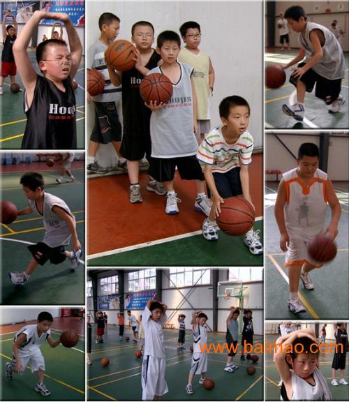 厦门正岛周末篮球培训班