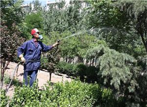 园林绿化设计