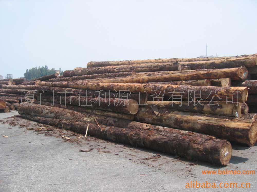 供应厦门木材 建筑木方,木板,木制品加工 ,供应厦门木材 建筑木