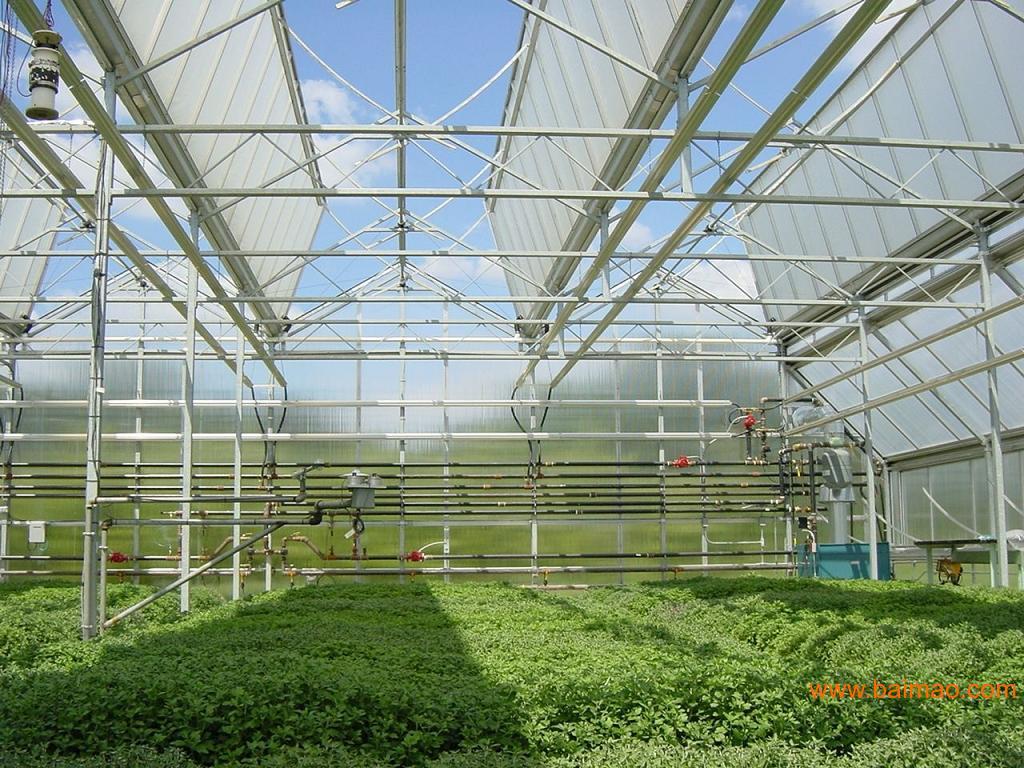 青州市欣宏源温室工程批发供应智能温室工程,日光温室建设,连栋温室智能大棚,生态餐厅建设