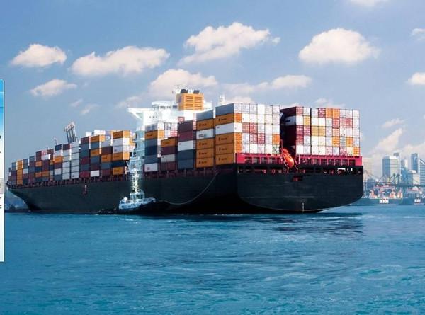 海运货代服务