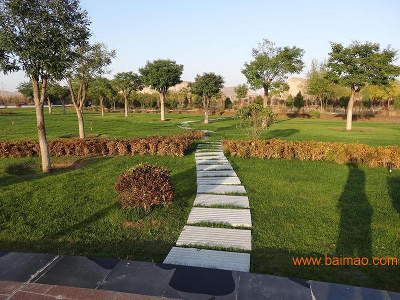 绿润园林_专业的园林景观公司 酒泉园林景观设计