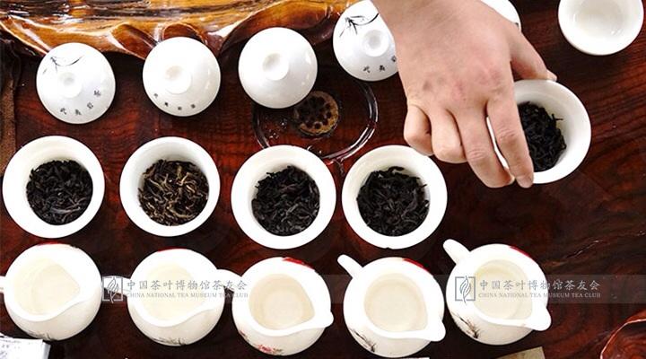 厦门红地汇武夷山红茶