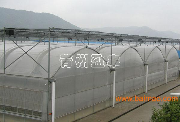 想要值得信赖阳光板温室建造就找盈丰温室工程公司 阳光板温室大棚,