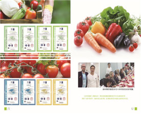 新鲜蔬菜配送