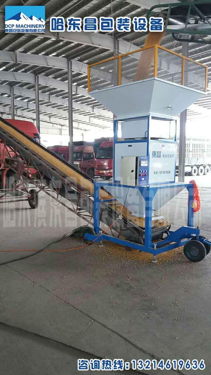 辽宁锦州DXDK900自动充填颗粒包装机价格 - 中国供应商