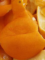 祛口臭橘子皮