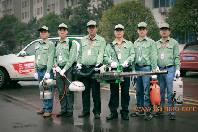杭州防治白蚁,**灭白蚁服务