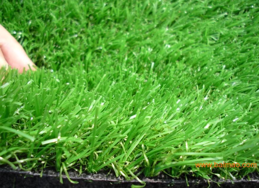 广州景观人造草坪,屋顶装饰草坪,绿化草坪,人工草,广州景观人造草坪,屋顶装饰草坪,绿化草坪,人工草生产厂家,广州景观人造草坪,屋顶装饰草坪,绿化草坪,人工草价格