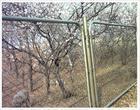 廠家供應山西煤礦支護網,邊坡防護網,經緯網,輸送帶
