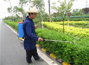 园林绿化建设